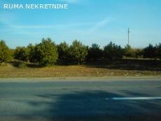 Na putu Ruma -Irig prodajem zemljiste